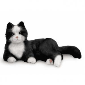 Interactieve Robot Kat voor Dementie - Zwart