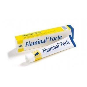 Flaminal Forte Enzym Alginogel 40gr.